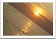 солнечный летний 2 гагра абхазия